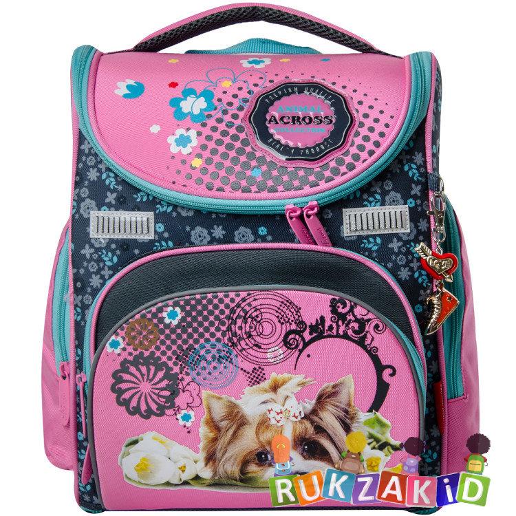 Магазин дешевые школьные рюкзаки от 550 до 1000 рюкзаки король и шут